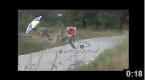 Clio vs lièvre